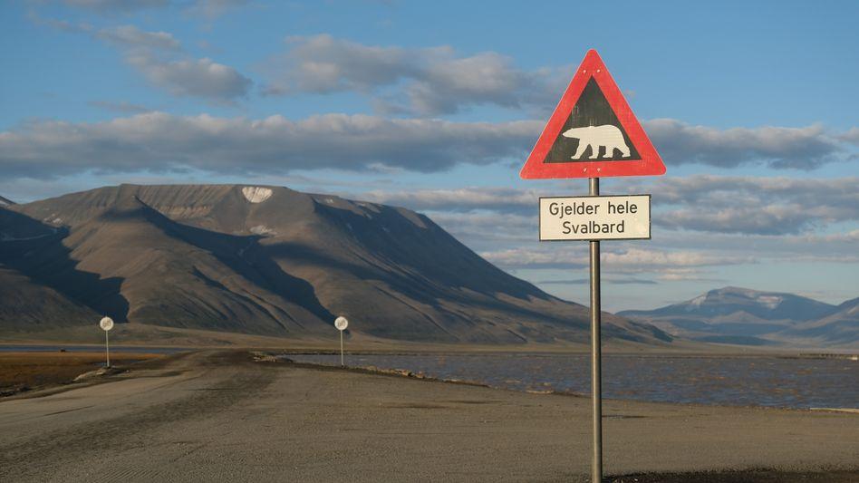 Eisbären-Warnschild auf der Inselgruppe