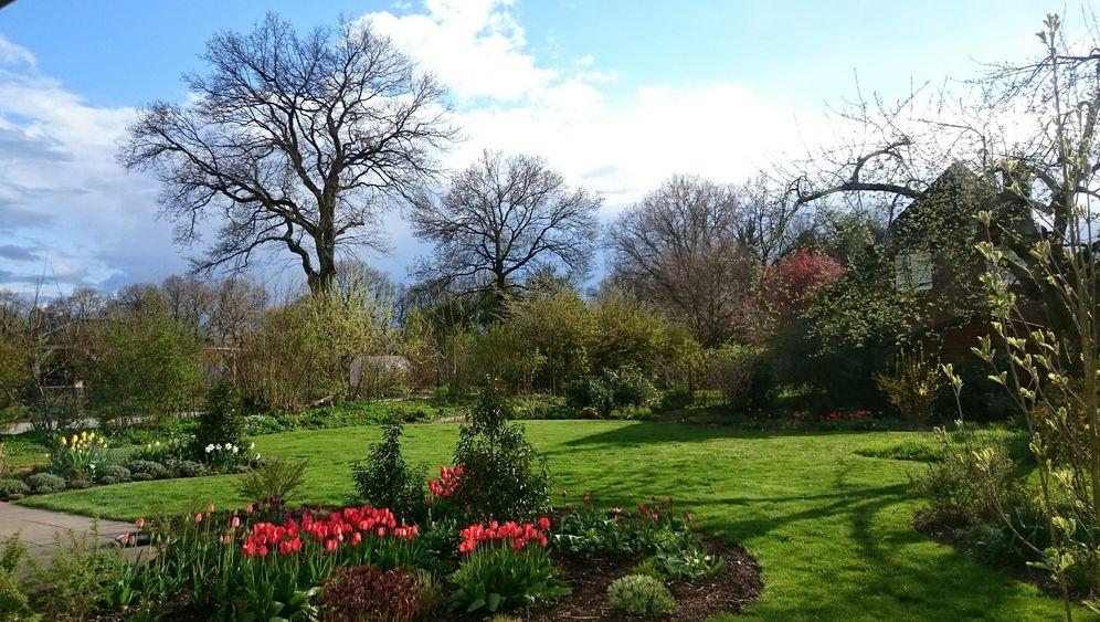 Zwischen Rasen und Blumenbeet: Die Gärten der Leser