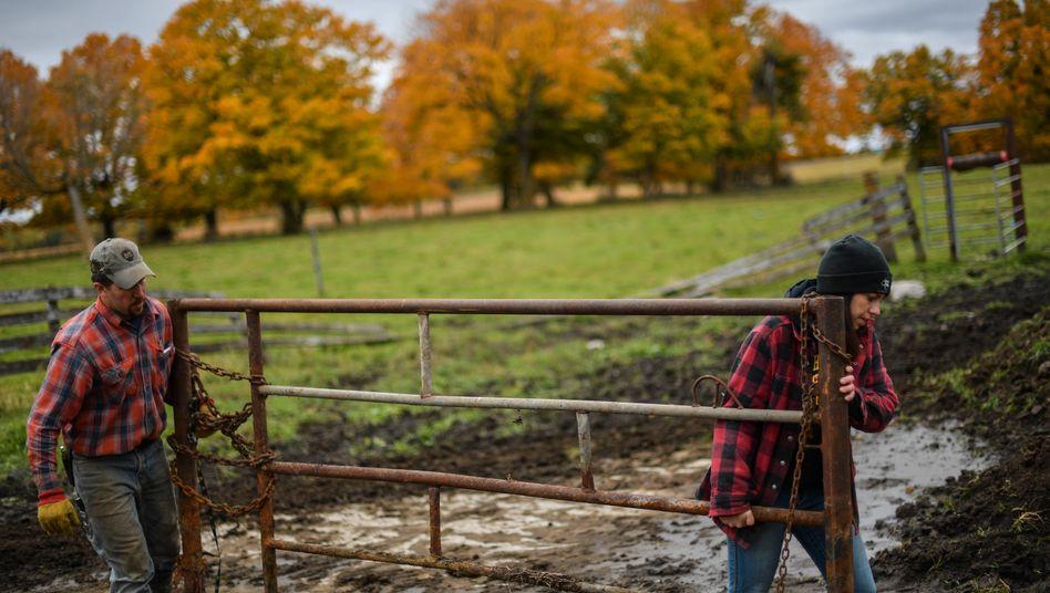 US-Landwirte im Handelskrieg: Warum Amerikas Farmer zu Trump stehen