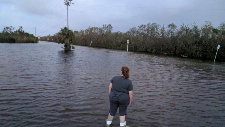 Straße Richtung Everglades City in Florida (USA)