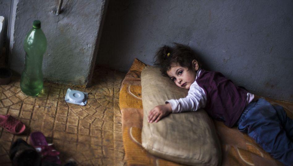 Flüchtlingskind: Inzwischen haben 350.000 Syrer ihre Heimat verlassen