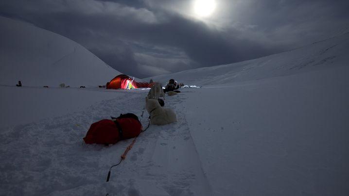 Michael Martins Blog: Husky-Tour über Spitzbergen
