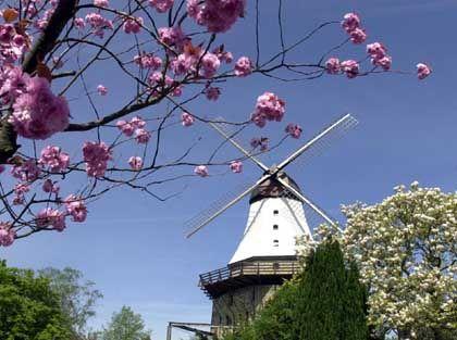 """""""Amanda"""": Höchste Windmühle des Landes"""