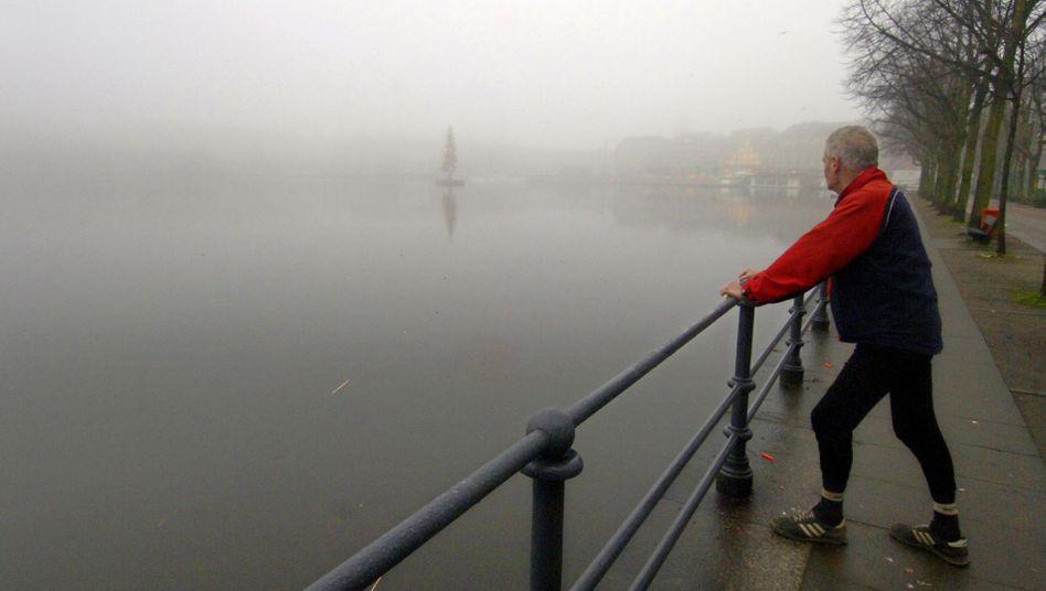 Blick in den Nebel an der Binnenalster in Hamburg (Archivbild)