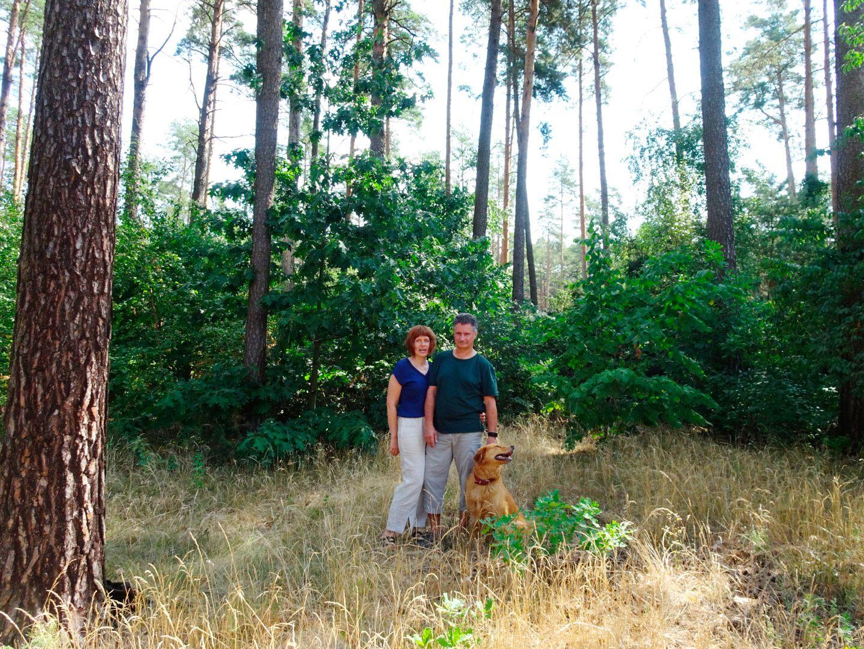 Waldbrand Fichtenwalde
