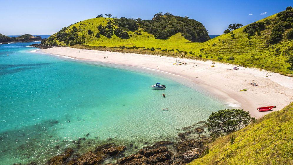 Strände, Inseln, Wälder: Neuseelands unterschätzter Norden