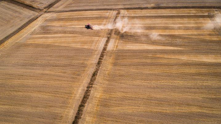 Folgen des Klimawandels: Dürre in Deutschland 2018