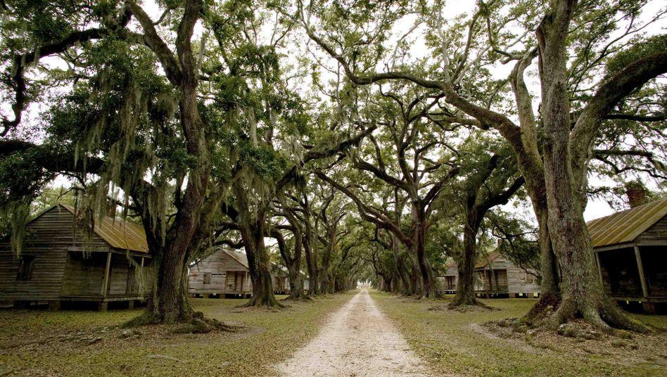 Sklaven-Unterkünfte auf einer Plantage im US-Bundesstaat Louisiana (Archivbild)