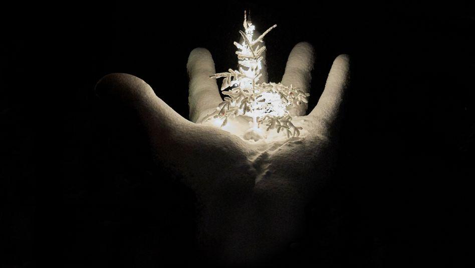 Es werde Licht: Was hilft Trauernden an Weihnachten?