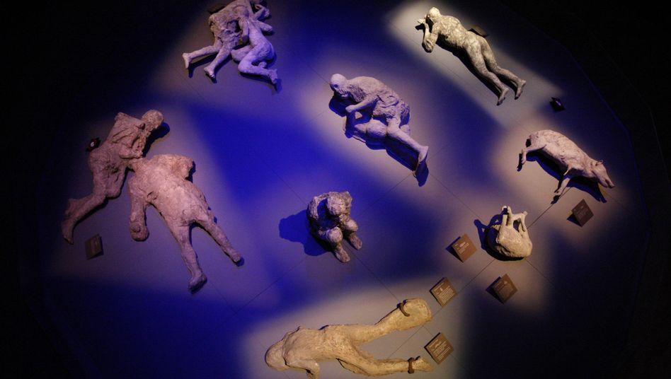 Gipsabdrücke zeigen Opfer des Vesuv-Ausbruchs