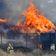 Feuerwehr kämpft gegen Flammen und Wind