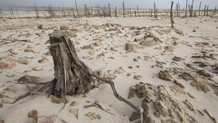 Kapstadt: Es fehlt das Wasser