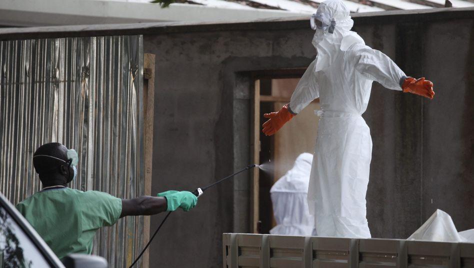 Epidemie: WHO erklärt Ebola zum internationalen Gesundheitsnotfall