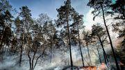 Niederländische Ortschaft Herkenbosch evakuiert