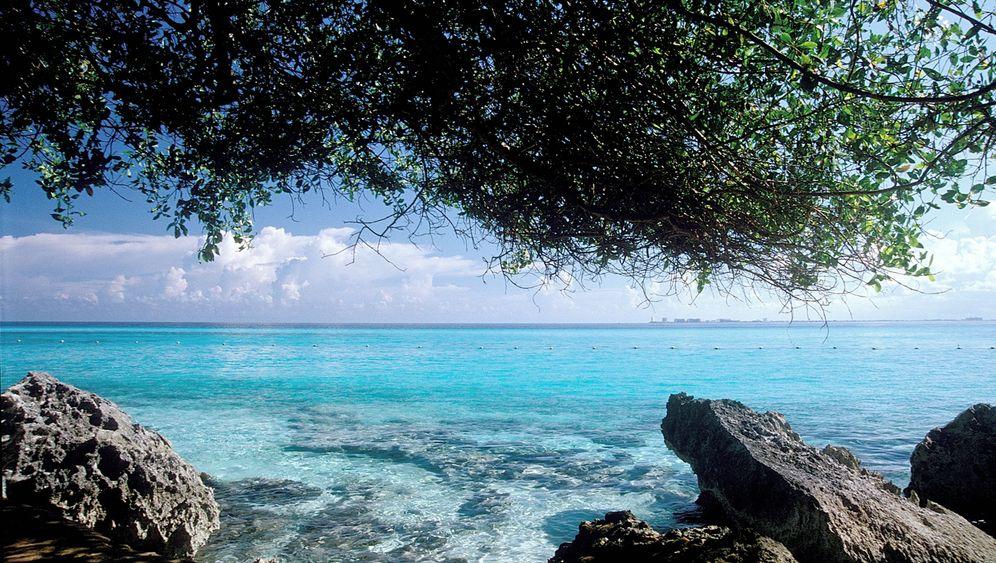 Yucatán: Abtauchen in die Cenoten