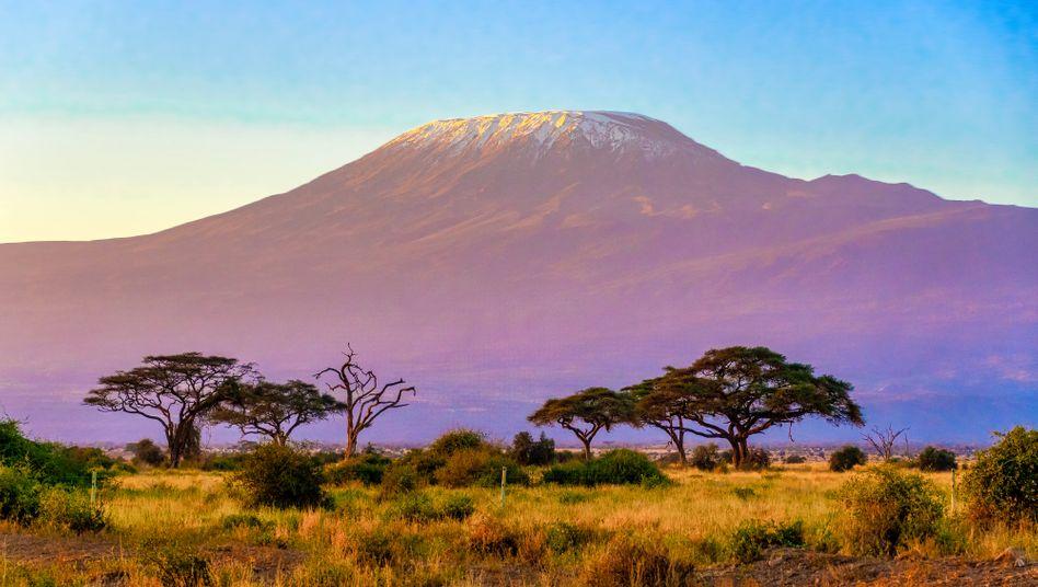Der Kilimandscharo, vom Amboseli-Nationalpark in Kenia aus gesehen