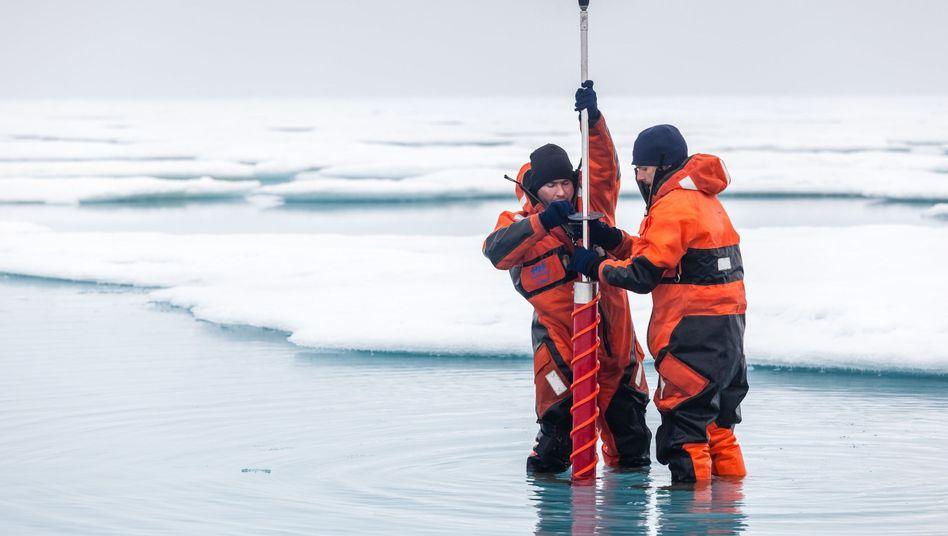 Wissenschaftler nehmen in der zentralen Arktis eine Meereisprobe (Archivbild von 2014)