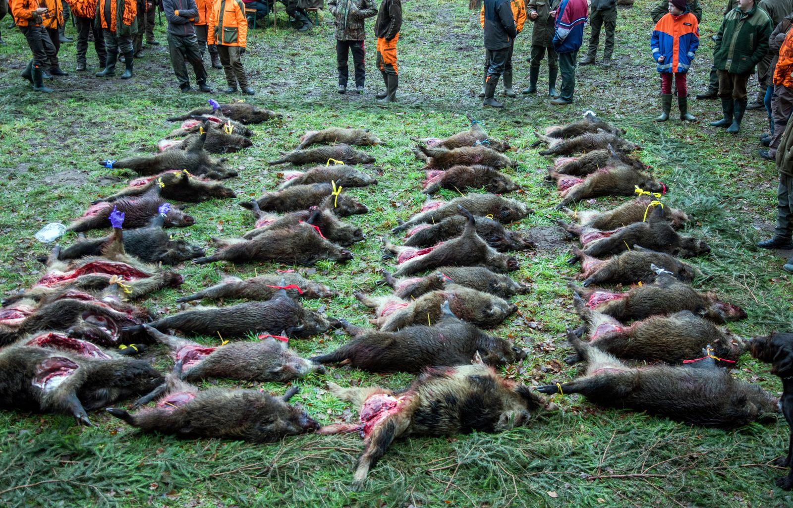 Jäger werden Wildfleisch nicht los