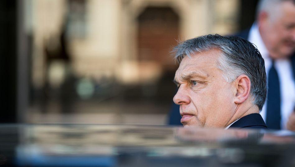 Viktor Orbán (Archivbild): Mit der Umfrage einen Schritt zu weit gegangen