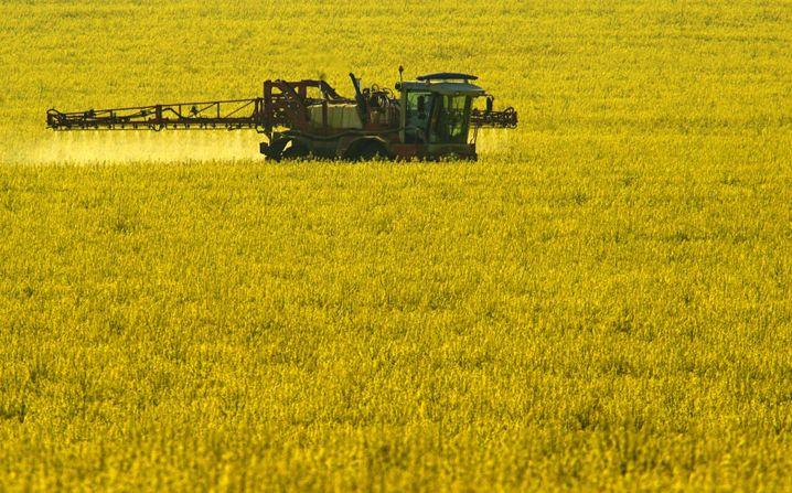 Bestellung eines Rapsfeldes: In der deutschen Landwirtschaft werden 13 Prozent der Treibhausgase produziert