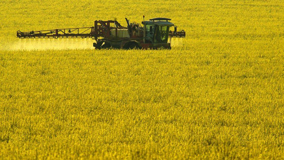 Sprühen von Pflanzenschutzmittel: Gift findet sich oft in Gewässern wieder