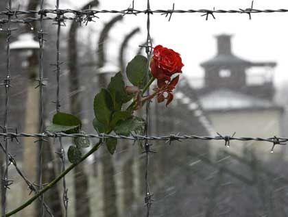 Zeichen des Erinnerns: 60 Jahre Befreiung Buchenwald