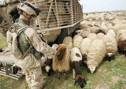 US-Soldat im Irak: Wenig Ruhepausen