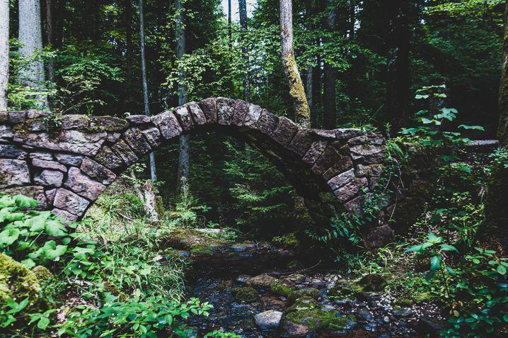 Brücke im Schweinbachtal
