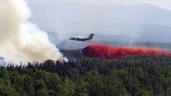 Arktis-Wälder brennen so heftig wie noch nie