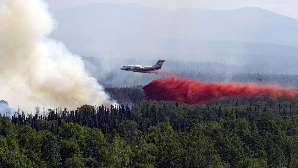 Löschflugzeug im US-Bundesstaat Alaska: Die Feuer hängen laut Forschern mit dem Klimawandel zusammen