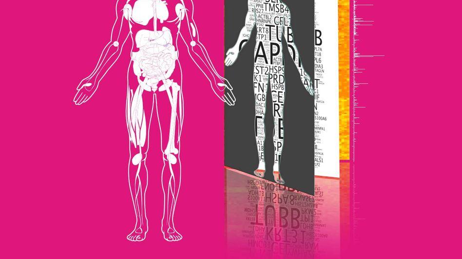 Proteom des Menschen: Welche Stoffe entstehen in unseren Zellen?