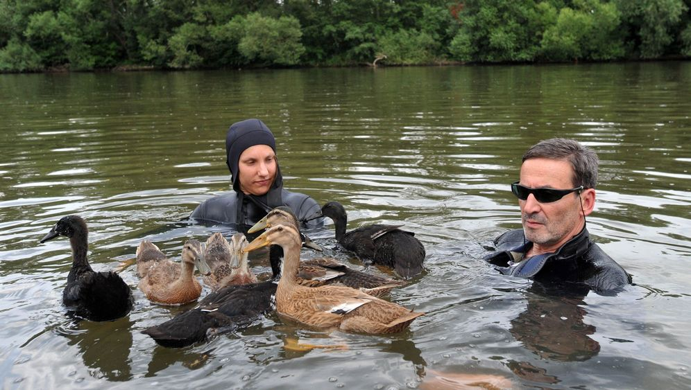 Photo Gallery: The Duck Race