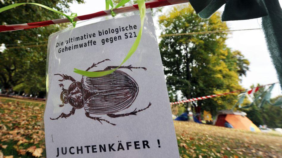 Plakat im Schlossgarten: Naturschützer fürchten um das Wohl des Juchtenkäfers