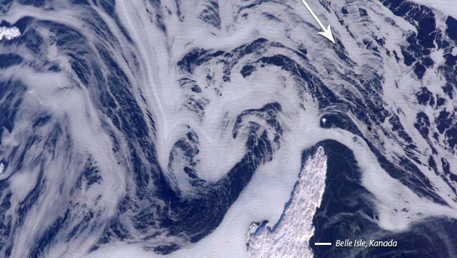 Labradorstrom vor Kanadas Ostküste: Kaltes Wasser nach Süden