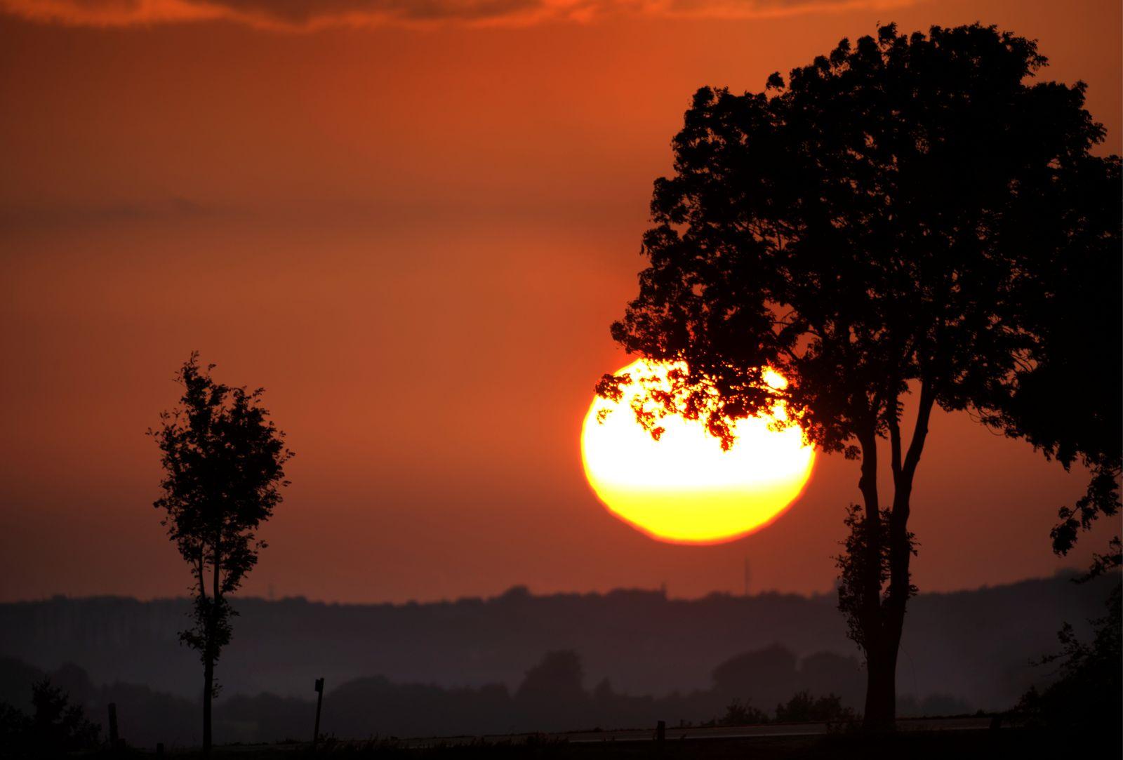 Längste Videos nach Tag: natur euter