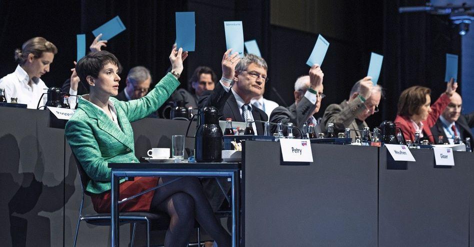 Parteivorsitzende Petry, Meuthen: Der beißt nicht, der bellt nicht mal