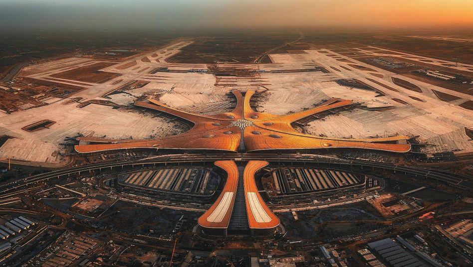 Großflughafen in Peking:Gigantische Seesternskulptur