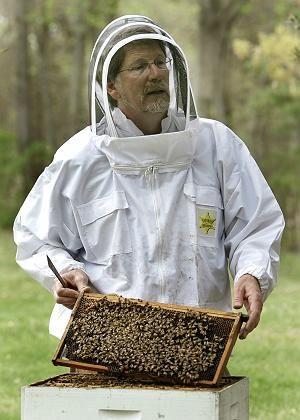 Bienenforscher Pettis: Mit Strahlung gegen den Killer