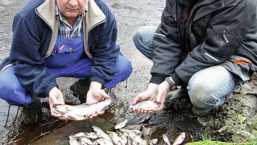 Angler, verseuchtes Wasser Eimerweise tote Fische