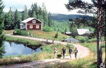 Ferienhaus in Schweden: Gäste müssen sich mit Plumpsklo abfinden