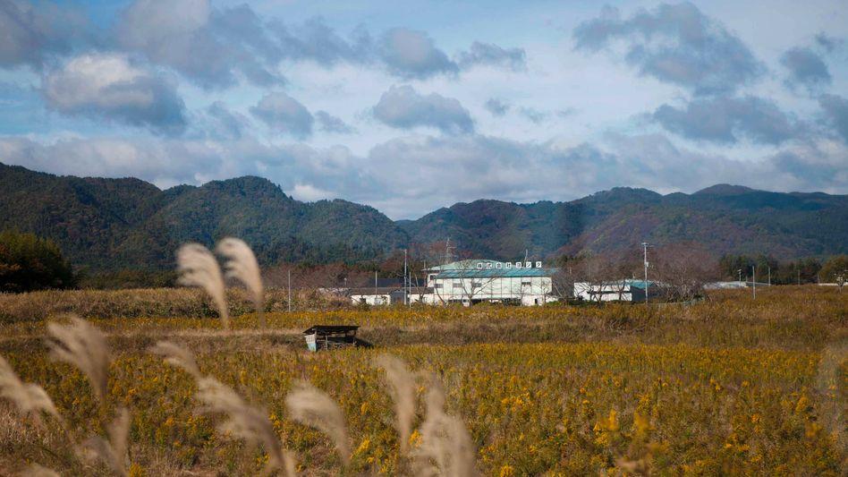 Verlassene Region in der Nähe des AKW Fukushima: Rückkehr möglich?