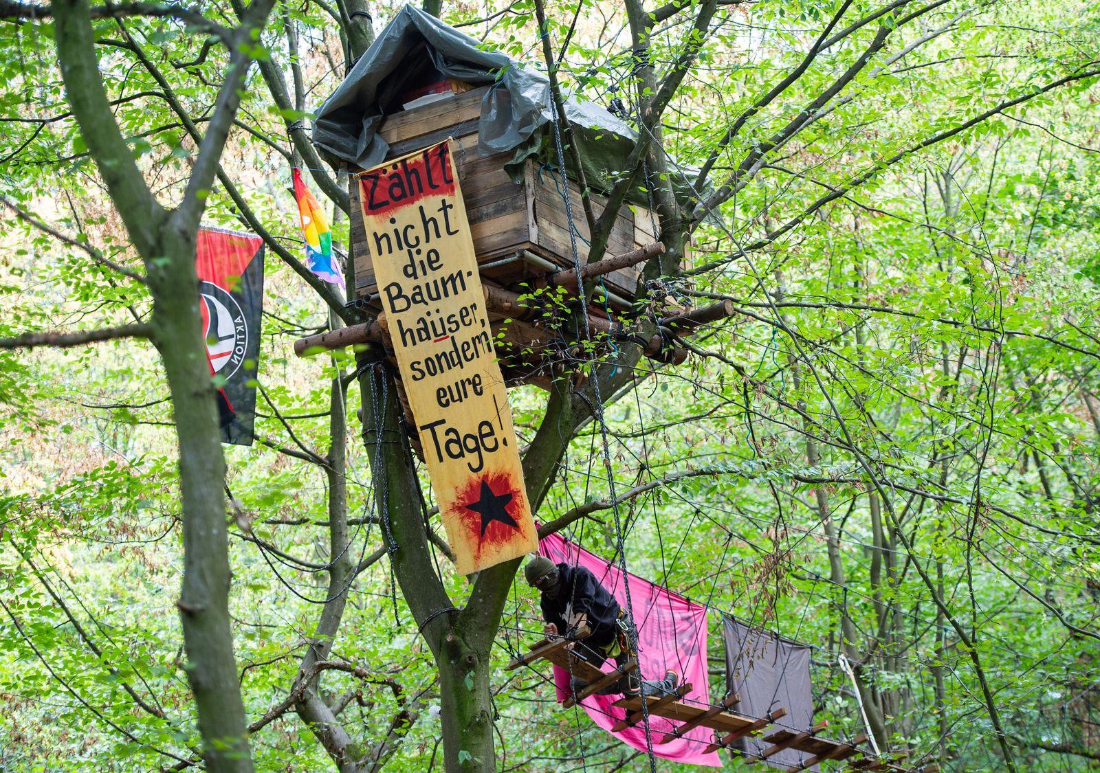 Lage im Hambacher Forst