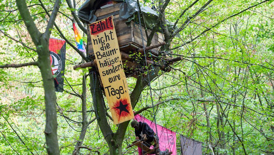 Baumhaus im Hambacher Forst