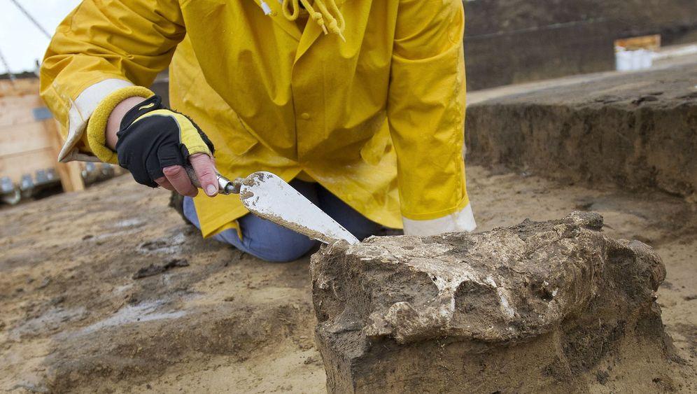 Archäologie: Den frühen Sachsen-Anhaltinern auf der Spur
