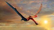 Riesiger Flugsaurier bevölkerte einst Australien