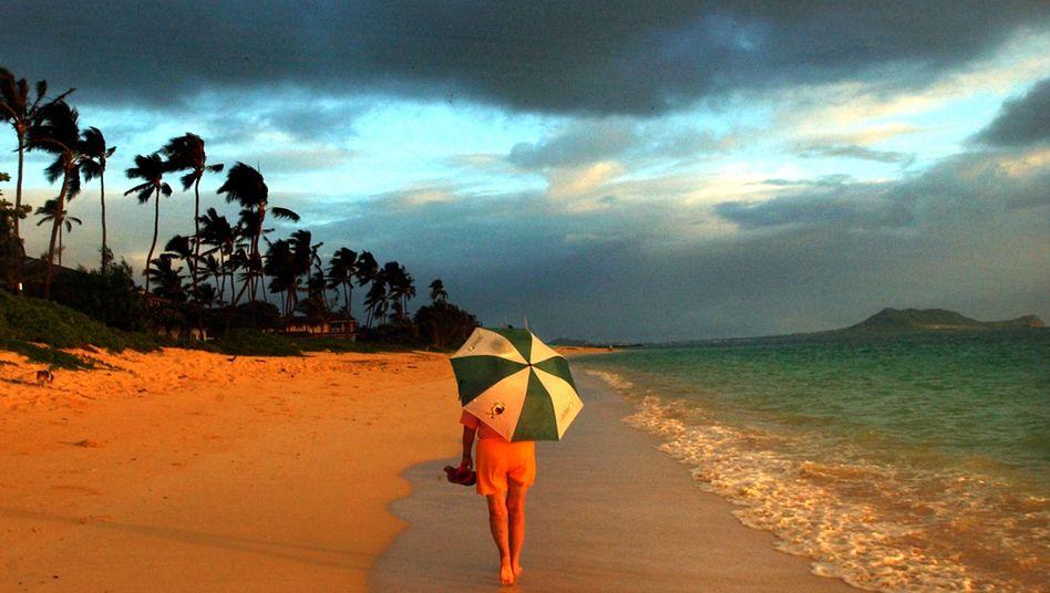 Strand von Hawaii: Eine Kamera mit Urlaubsfotos trieb von den USA bis nach Taiwan