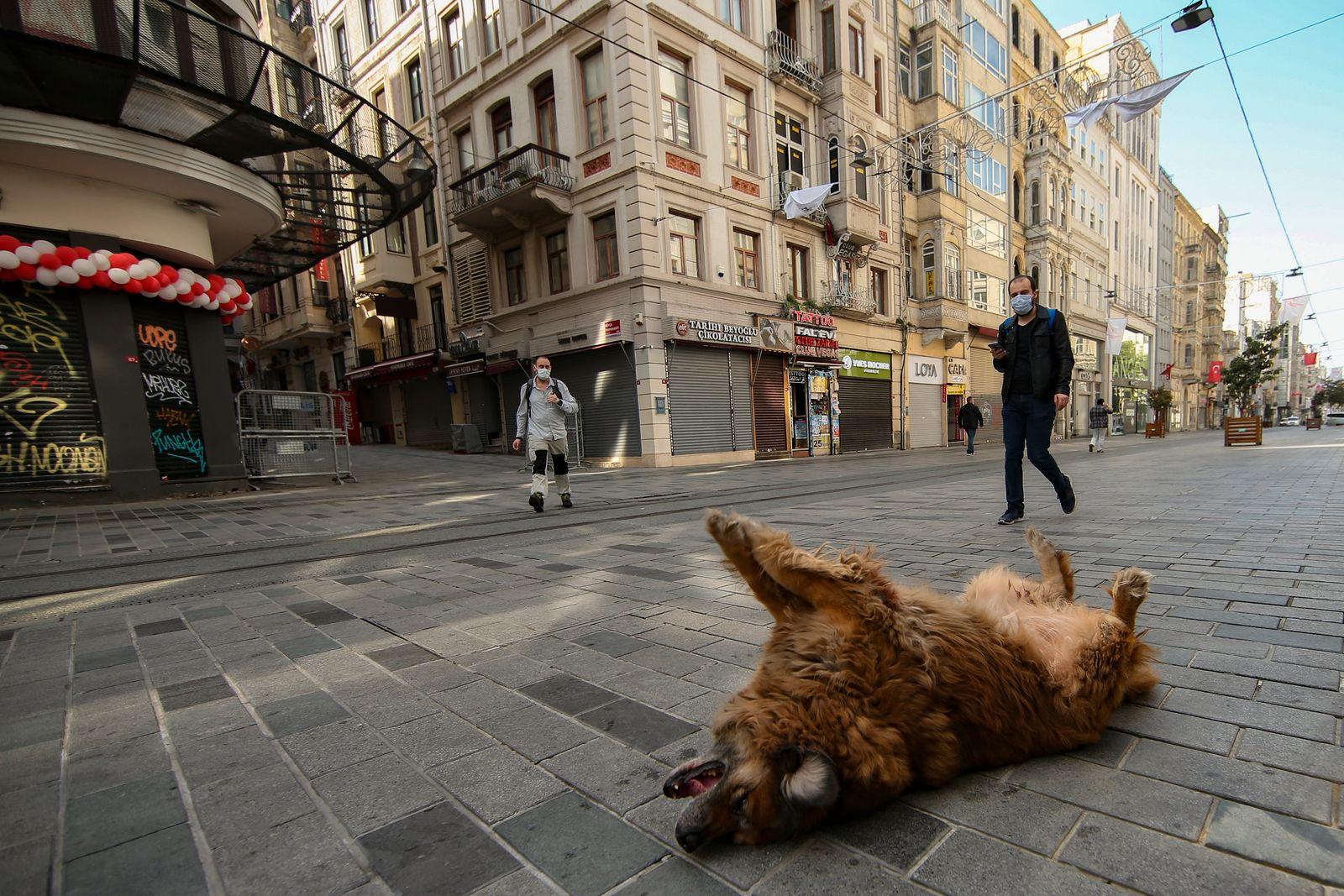 APTOPIX Virus Outbreak Turkey Lockdown