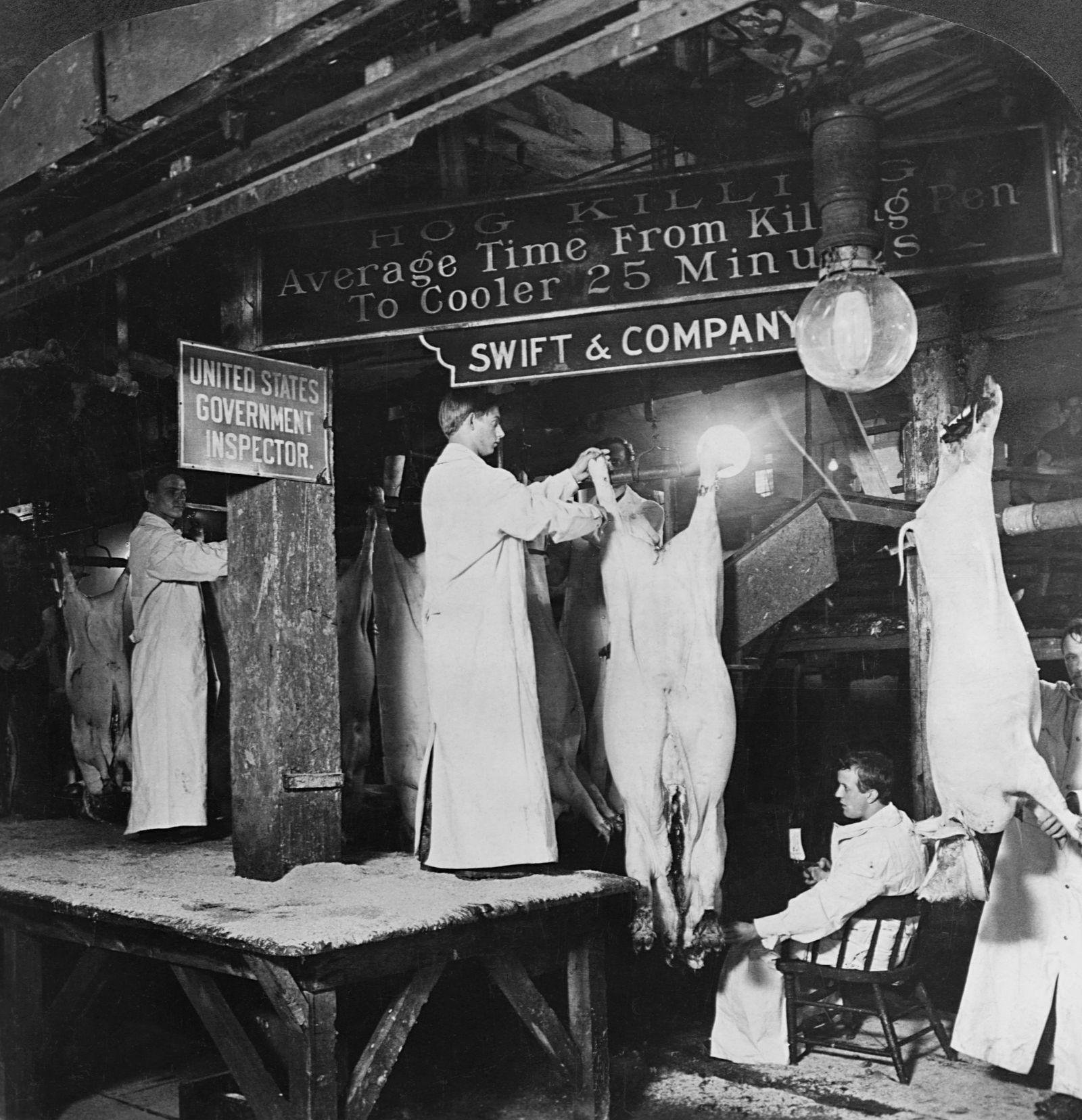 Meat Inspectors