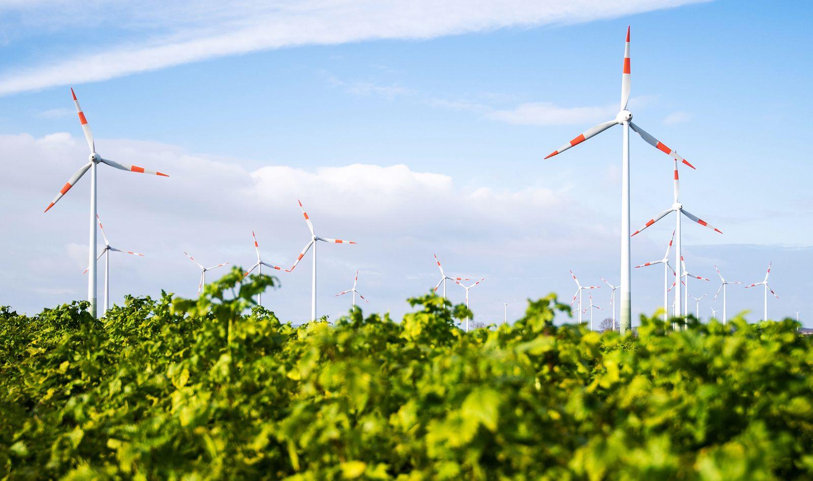 Pläne für Windenergie in Niedersachsen