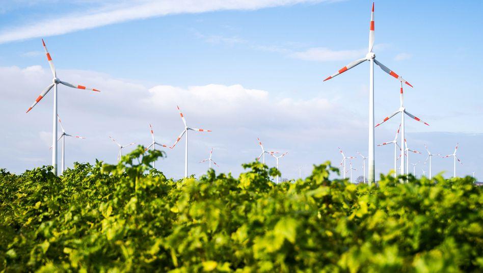 Windräder in Niedersachsen: Tennet hat eine wichtige Rolle beim Ausbau der Stromnetze